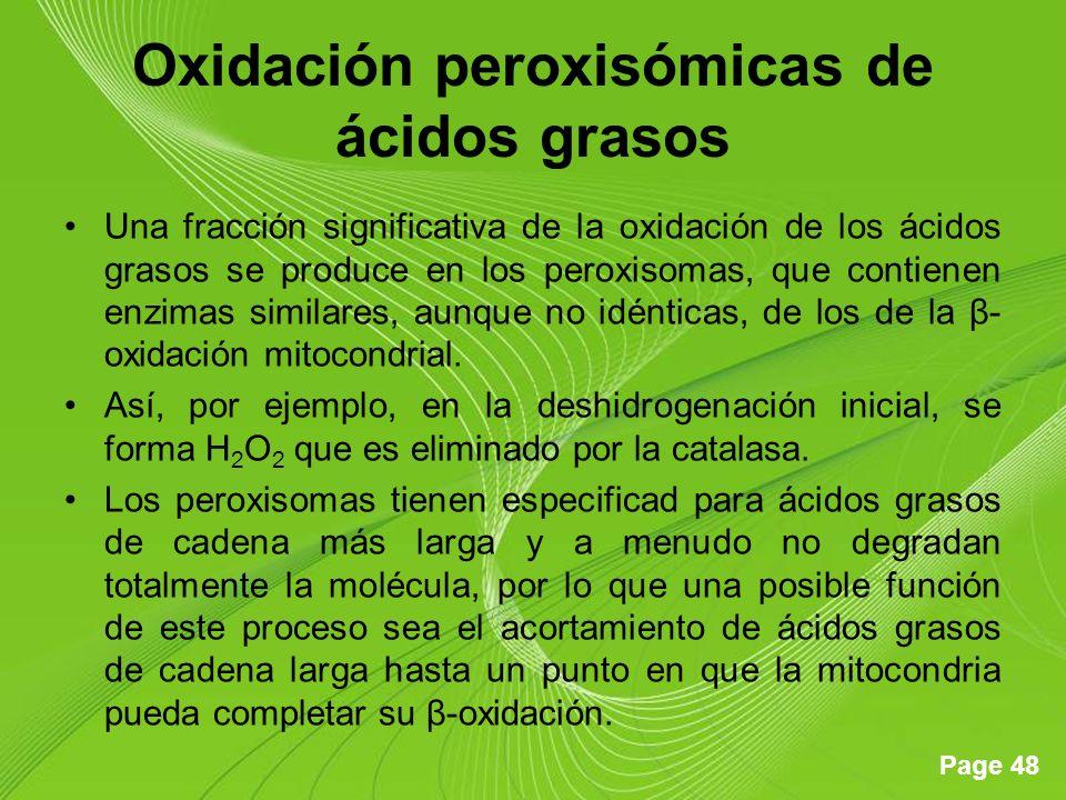 Page 48 Oxidación peroxisómicas de ácidos grasos Una fracción significativa de la oxidación de los ácidos grasos se produce en los peroxisomas, que contienen enzimas similares, aunque no idénticas, de los de la β- oxidación mitocondrial.