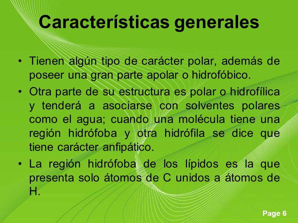 Page 6 Características generales Tienen algún tipo de carácter polar, además de poseer una gran parte apolar o hidrofóbico.