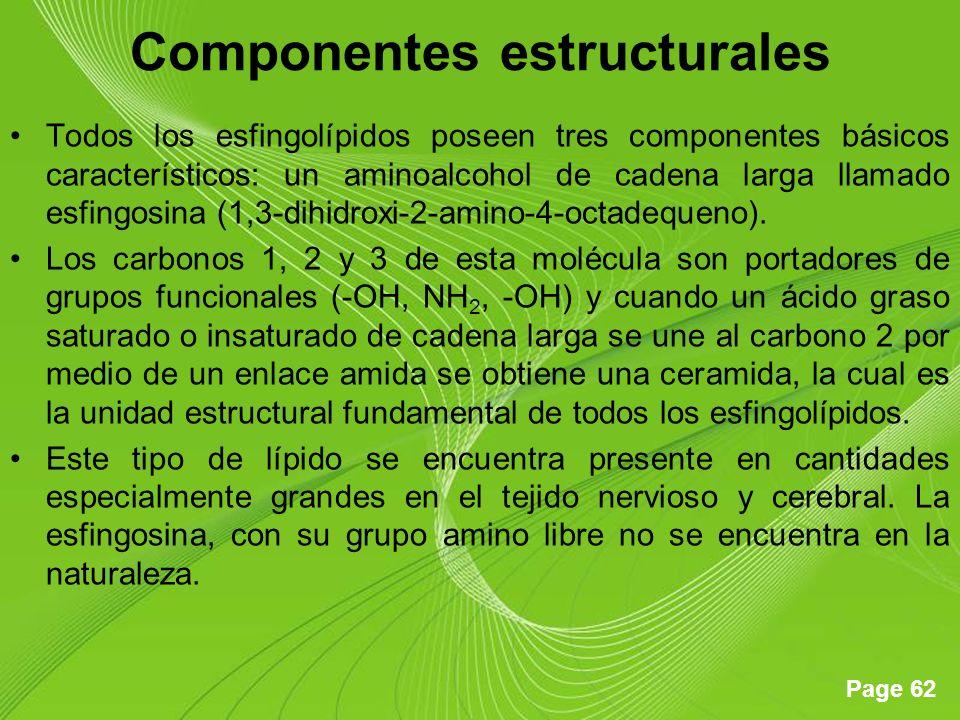Page 62 Componentes estructurales Todos los esfingolípidos poseen tres componentes básicos característicos: un aminoalcohol de cadena larga llamado es
