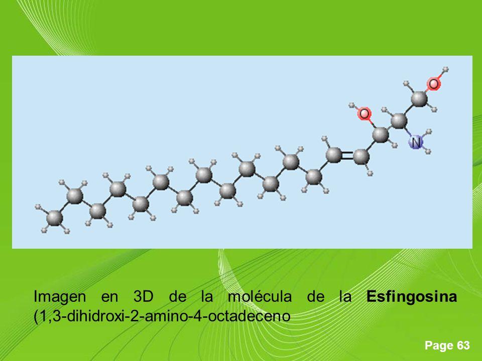 Page 63 Imagen en 3D de la molécula de la Esfingosina (1,3-dihidroxi-2-amino-4-octadeceno