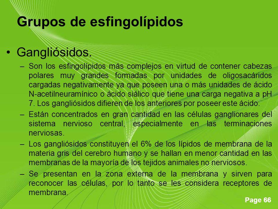 Page 66 Grupos de esfingolípidos Gangliósidos.