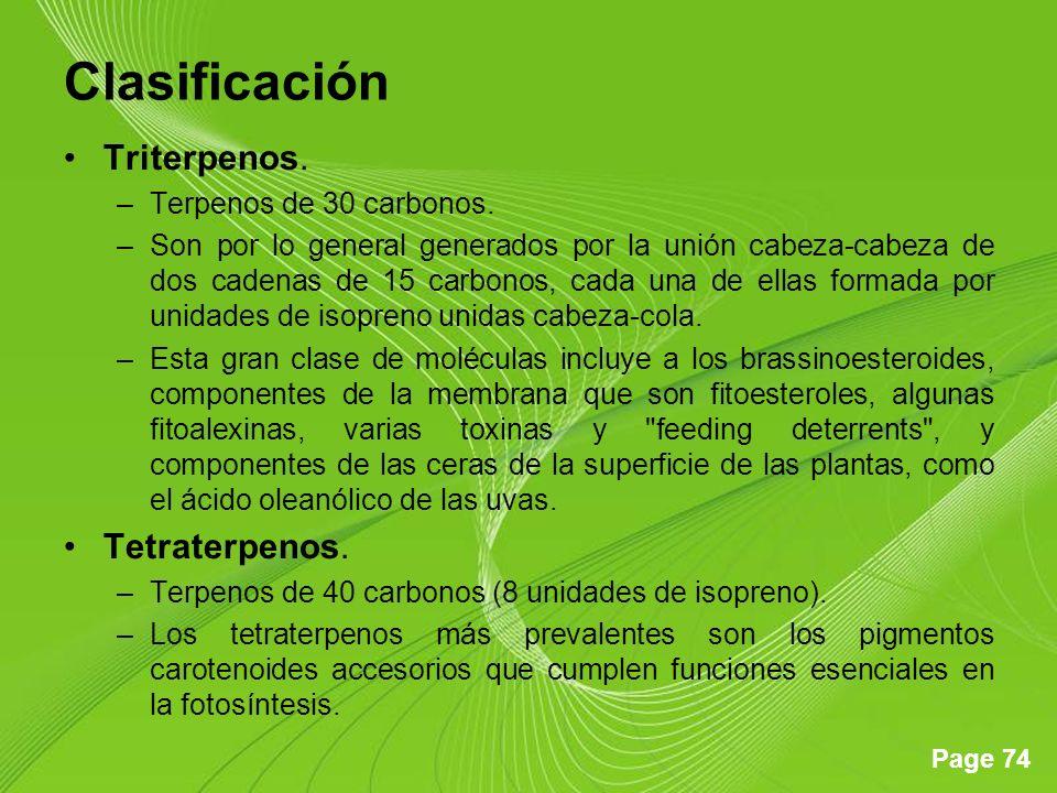 Page 74 Clasificación Triterpenos.–Terpenos de 30 carbonos.