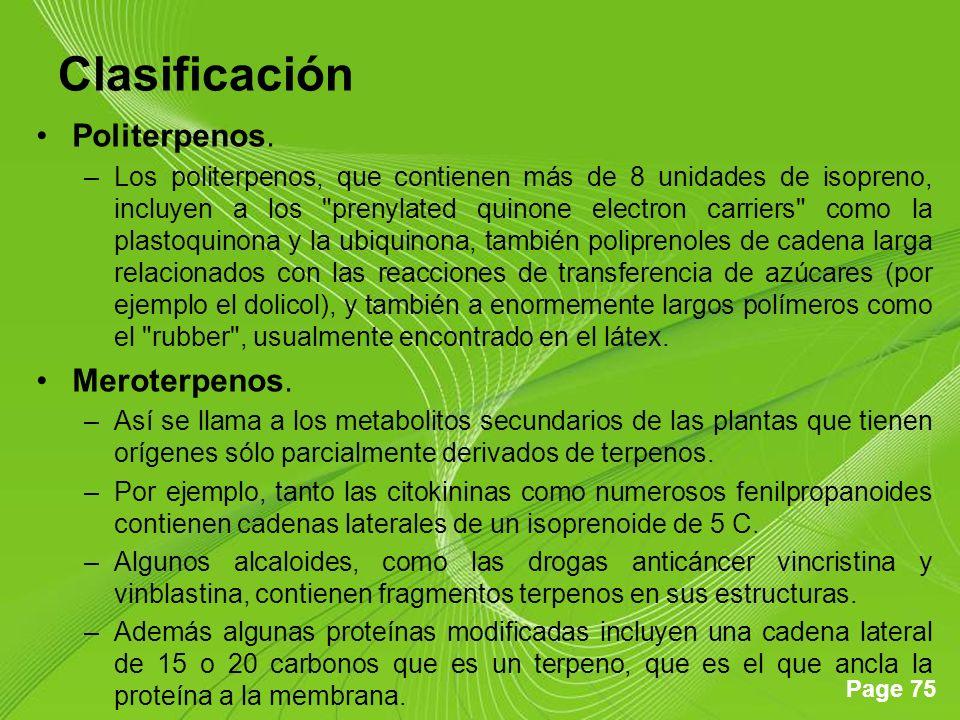Page 75 Clasificación Politerpenos. –Los politerpenos, que contienen más de 8 unidades de isopreno, incluyen a los