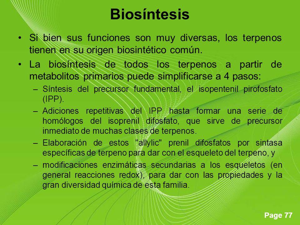 Page 77 Biosíntesis Si bien sus funciones son muy diversas, los terpenos tienen en su origen biosintético común.