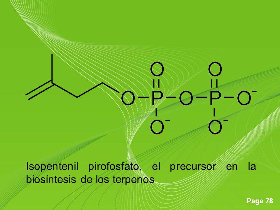 Page 78 Isopentenil pirofosfato, el precursor en la biosíntesis de los terpenos