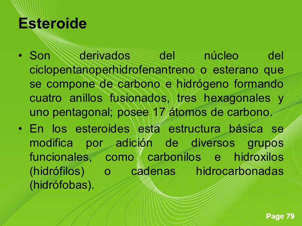 Page 79 Esteroide Son derivados del núcleo del ciclopentanoperhidrofenantreno o esterano que se compone de carbono e hidrógeno formando cuatro anillos fusionados, tres hexagonales y uno pentagonal; posee 17 átomos de carbono.