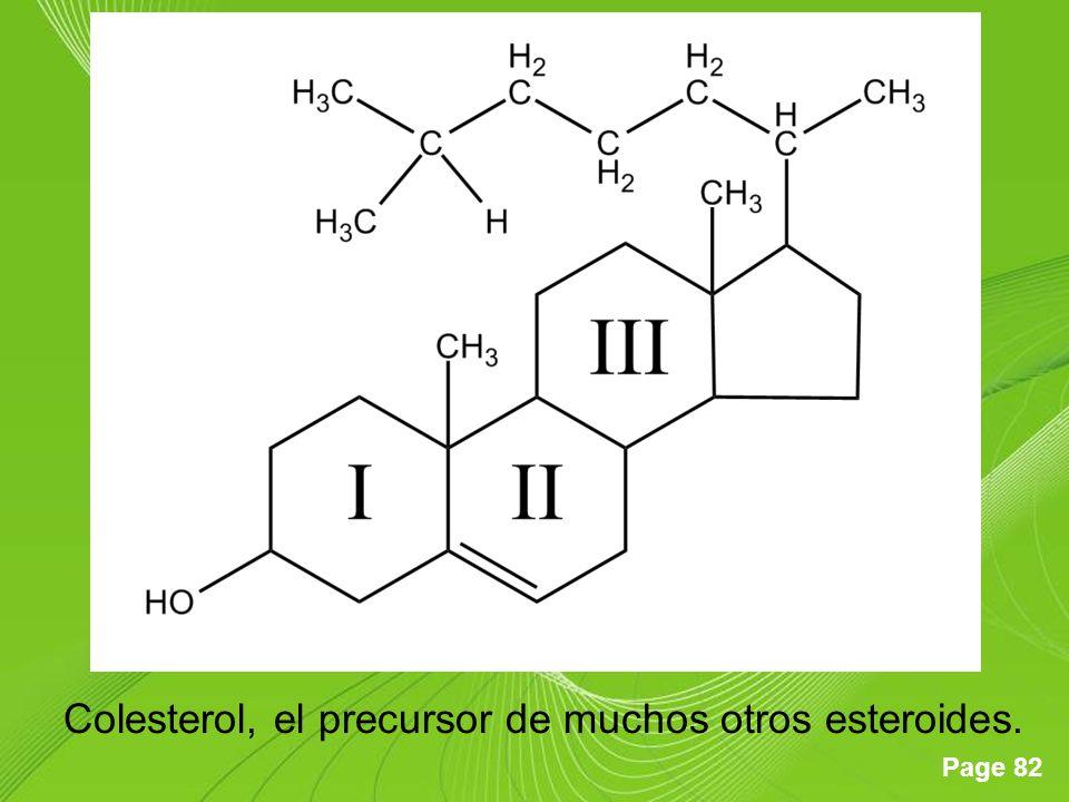 Page 82 Colesterol, el precursor de muchos otros esteroides.