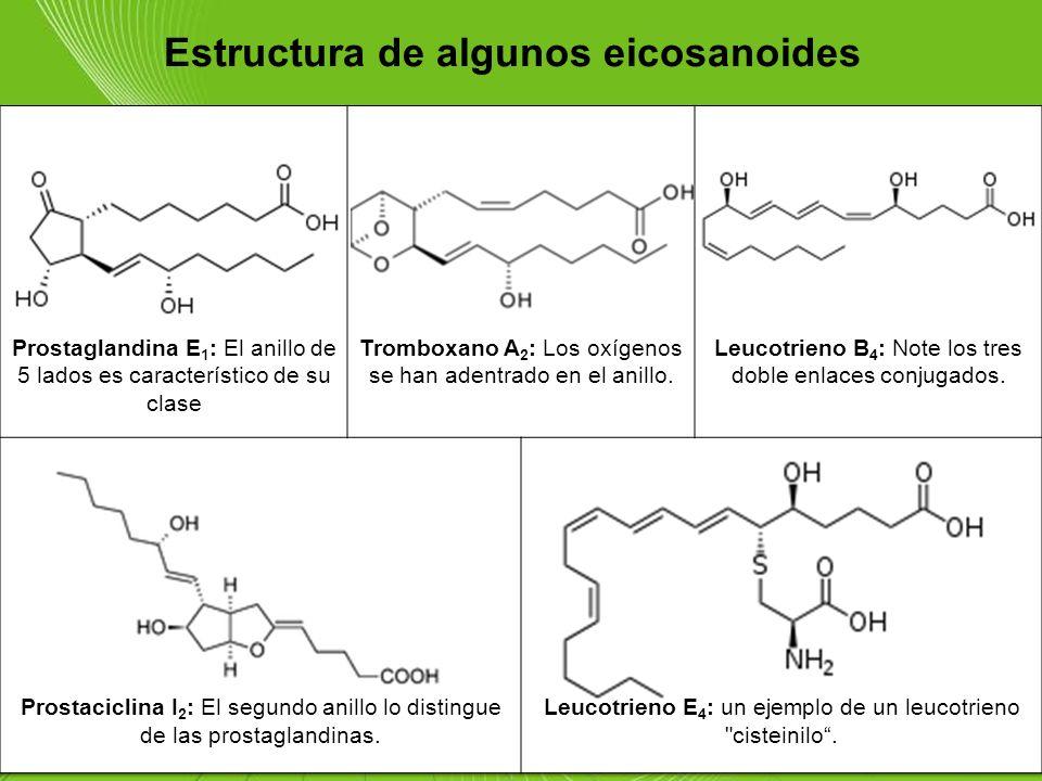 Page 91 Estructura de algunos eicosanoides