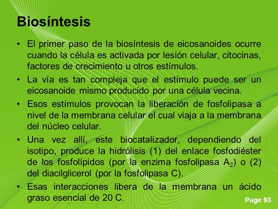 Page 93 Biosíntesis El primer paso de la biosíntesis de eicosanoides ocurre cuando la célula es activada por lesión celular, citocinas, factores de crecimiento u otros estímulos.