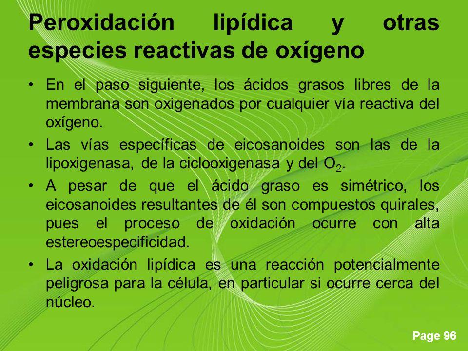 Page 96 Peroxidación lipídica y otras especies reactivas de oxígeno En el paso siguiente, los ácidos grasos libres de la membrana son oxigenados por cualquier vía reactiva del oxígeno.