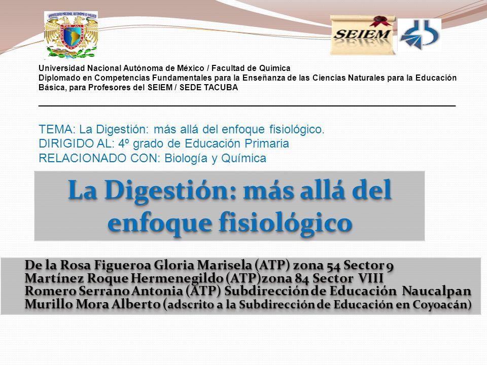 De la Rosa Figueroa Gloria Marisela (ATP) zona 54 Sector 9 De la Rosa Figueroa Gloria Marisela (ATP) zona 54 Sector 9 Martínez Roque Hermenegildo (ATP