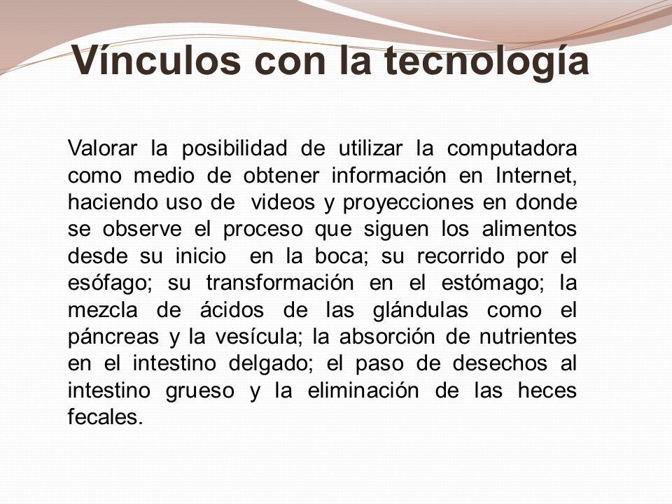 Valorar la posibilidad de utilizar la computadora como medio de obtener información en Internet, haciendo uso de videos y proyecciones en donde se obs