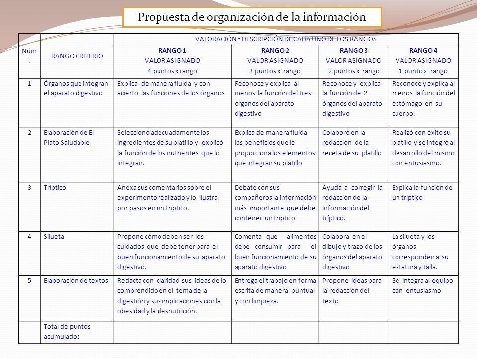 Propuesta de organización de la información Núm. RANGO CRITERIO VALORACIÓN Y DESCRIPCIÓN DE CADA UNO DE LOS RANGOS RANGO 1 VALOR ASIGNADO 4 puntos x r