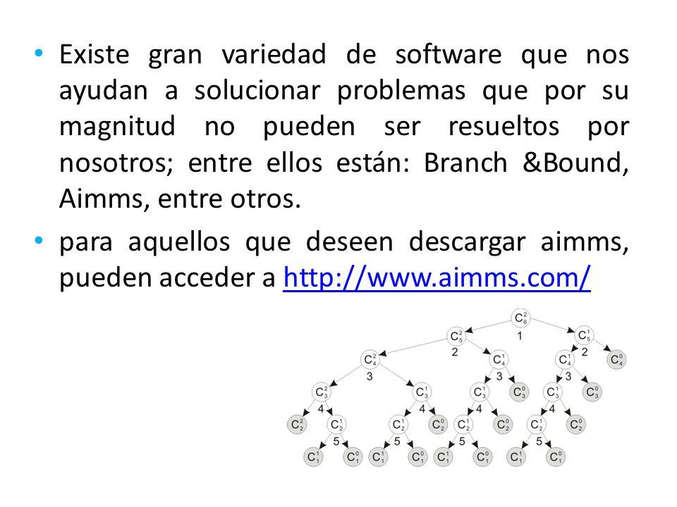 Existe gran variedad de software que nos ayudan a solucionar problemas que por su magnitud no pueden ser resueltos por nosotros; entre ellos están: Branch &Bound, Aimms, entre otros.