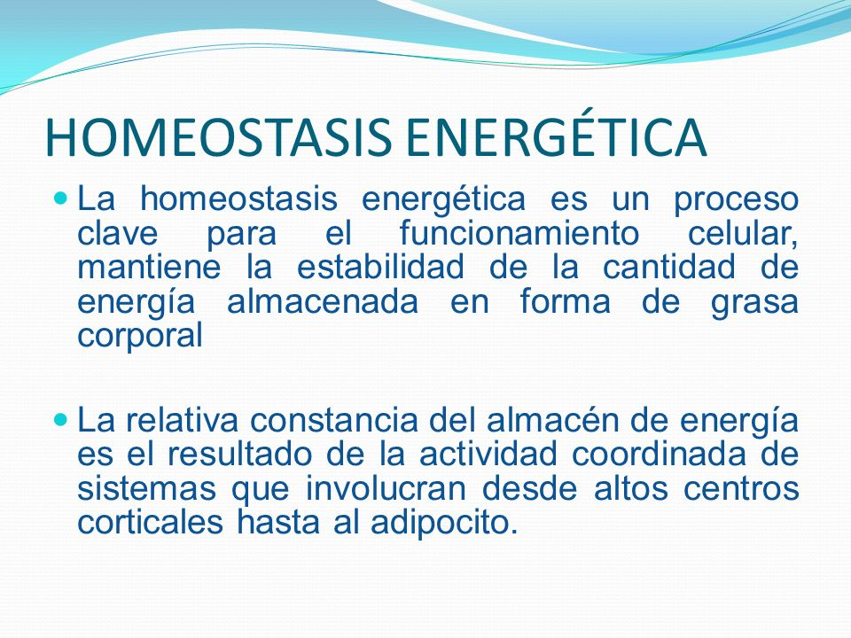 HOMEOSTASIS ENERGÉTICA La homeostasis energética es un proceso clave para el funcionamiento celular, mantiene la estabilidad de la cantidad de energía