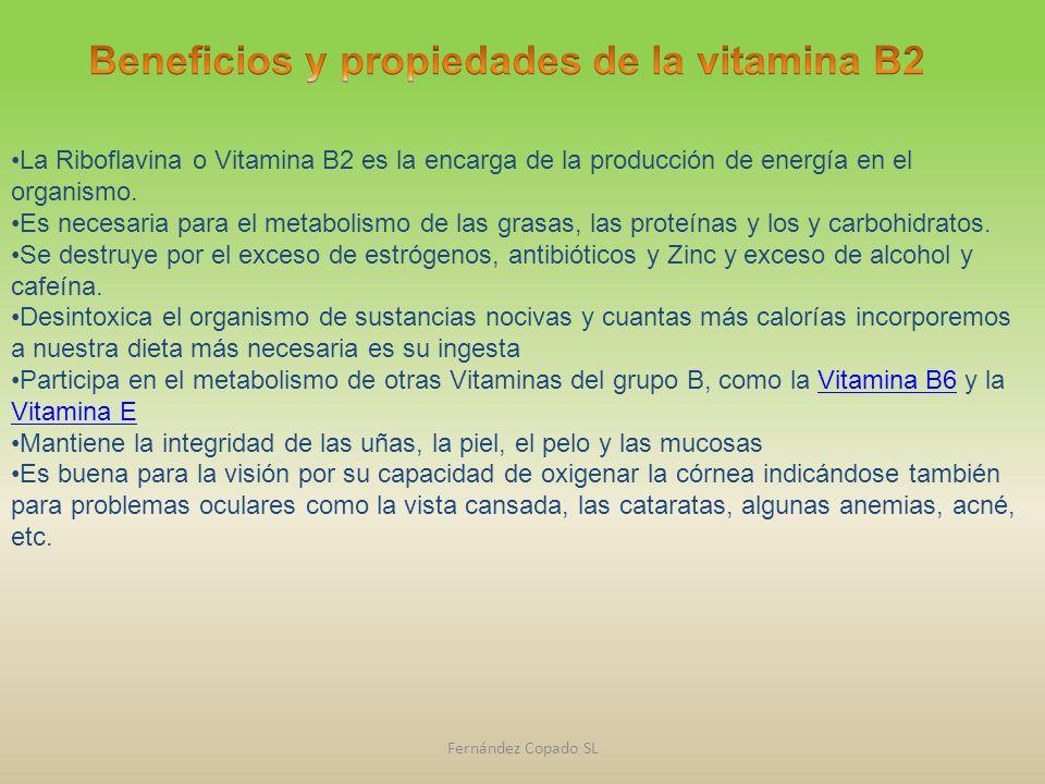 La Riboflavina o Vitamina B2 es la encarga de la producción de energía en el organismo. Es necesaria para el metabolismo de las grasas, las proteínas