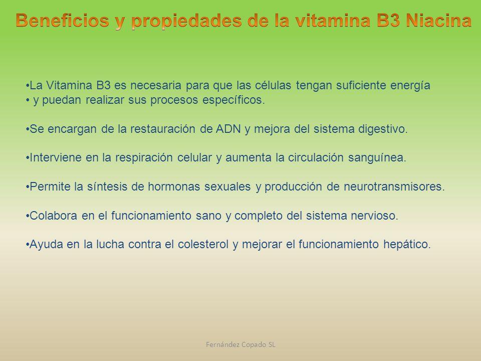 La Vitamina B3 es necesaria para que las células tengan suficiente energía y puedan realizar sus procesos específicos. Se encargan de la restauración