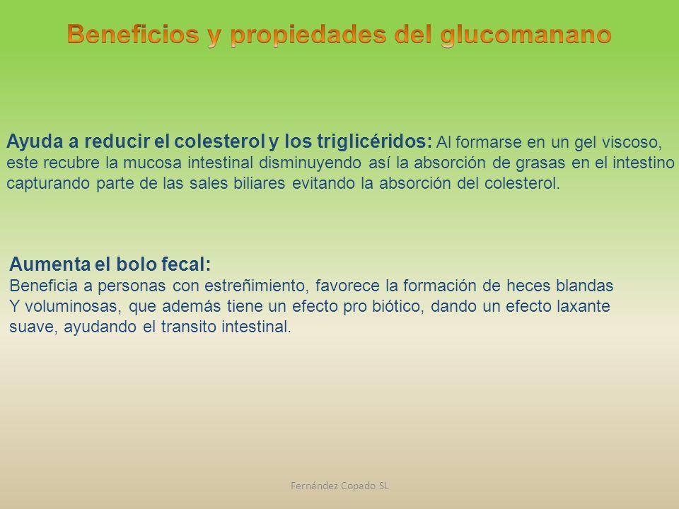 Fernández Copado SL Aumenta el bolo fecal: Beneficia a personas con estreñimiento, favorece la formación de heces blandas Y voluminosas, que además ti