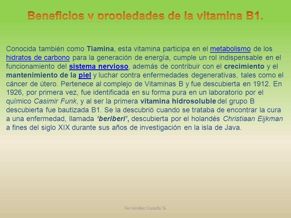 Conocida también como Tiamina, esta vitamina participa en el metabolismo de los hidratos de carbono para la generación de energía, cumple un rol indis
