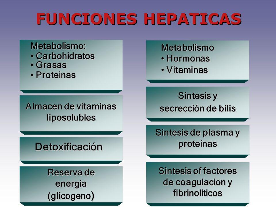 FUNCIONES HEPATICAS Metabolismo: Carbohidratos Carbohidratos Grasas Grasas Proteinas Proteinas Almacen de vitaminas liposolubles Detoxificación Reserv