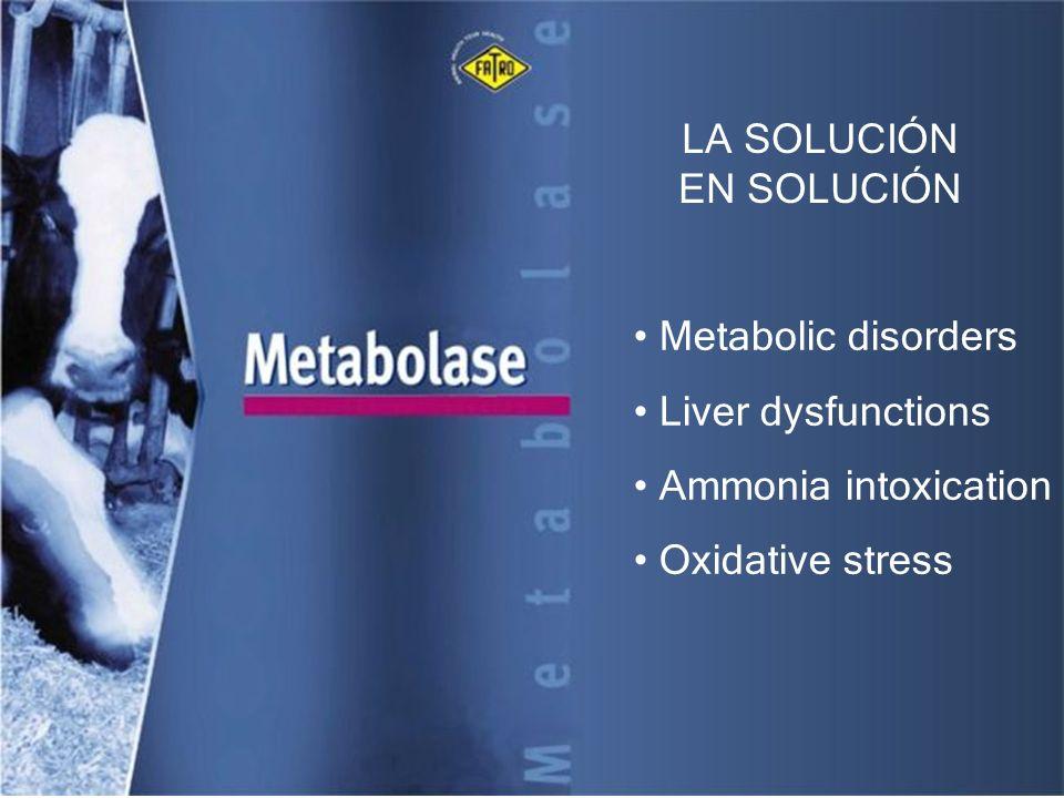 LA SOLUCIÓN EN SOLUCIÓN Metabolic disorders Liver dysfunctions Ammonia intoxication Oxidative stress