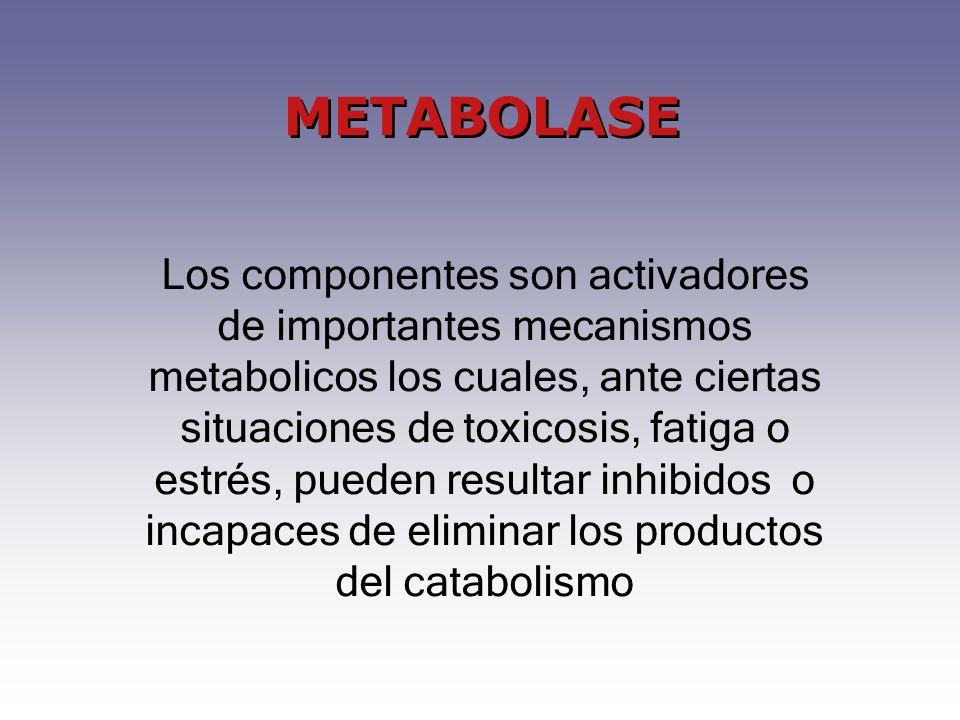 Los componentes son activadores de importantes mecanismos metabolicos los cuales, ante ciertas situaciones de toxicosis, fatiga o estrés, pueden resultar inhibidos o incapaces de eliminar los productos del catabolismo
