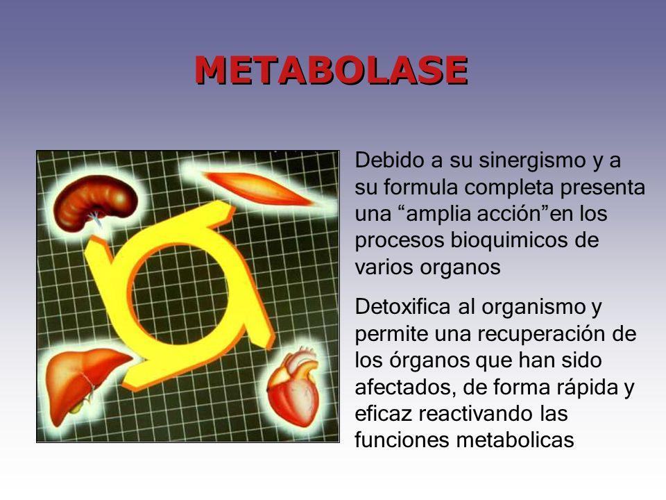 Debido a su sinergismo y a su formula completa presenta una amplia acciónen los procesos bioquimicos de varios organos Detoxifica al organismo y permite una recuperación de los órganos que han sido afectados, de forma rápida y eficaz reactivando las funciones metabolicas METABOLASE