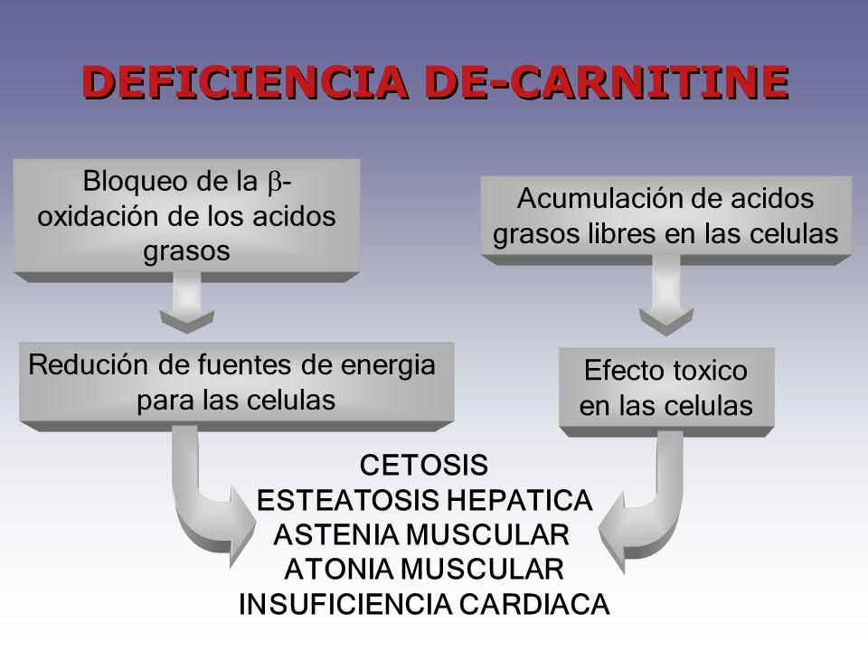 Bloqueo de la - oxidación de los acidos grasos Acumulación de acidos grasos libres en las celulas CETOSIS ESTEATOSIS HEPATICA ASTENIA MUSCULAR ATONIA MUSCULAR INSUFICIENCIA CARDIACA DEFICIENCIA DE-CARNITINE Redución de fuentes de energia para las celulas Efecto toxico en las celulas