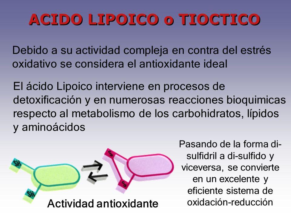 El ácido Lipoico interviene en procesos de detoxificación y en numerosas reacciones bioquimicas respecto al metabolismo de los carbohidratos, lípidos y aminoácidos Pasando de la forma di- sulfidril a di-sulfido y viceversa, se convierte en un excelente y eficiente sistema de oxidación-reducción ACIDO LIPOICO o TIOCTICO Debido a su actividad compleja en contra del estrés oxidativo se considera el antioxidante ideal Actividad antioxidante