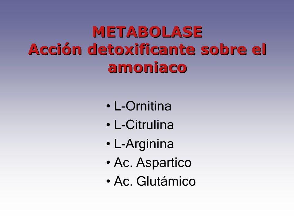 L-Ornitina L-Citrulina L-Arginina Ac. Aspartico Ac. Glutámico METABOLASE Acción detoxificante sobre el amoniaco