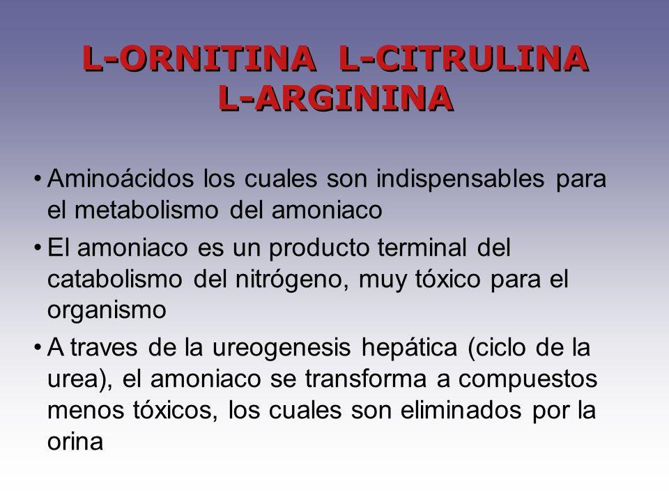 Aminoácidos los cuales son indispensables para el metabolismo del amoniaco El amoniaco es un producto terminal del catabolismo del nitrógeno, muy tóxico para el organismo A traves de la ureogenesis hepática (ciclo de la urea), el amoniaco se transforma a compuestos menos tóxicos, los cuales son eliminados por la orina L-ORNITINA L-CITRULINA L-ARGININA