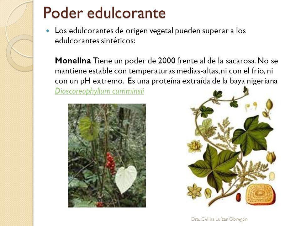 Poder edulcorante Dra. Celina Luízar Obregón Los edulcorantes de origen vegetal pueden superar a los edulcorantes sintéticos: Monelina Tiene un poder