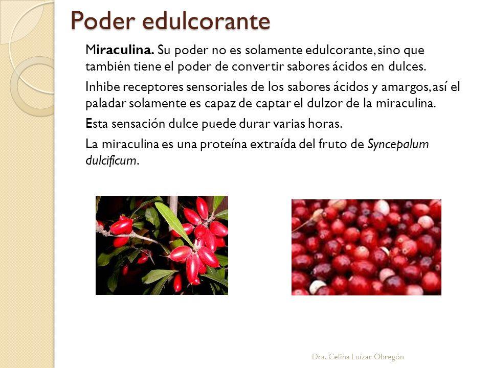 Poder edulcorante Dra. Celina Luízar Obregón Miraculina. Su poder no es solamente edulcorante, sino que también tiene el poder de convertir sabores ác