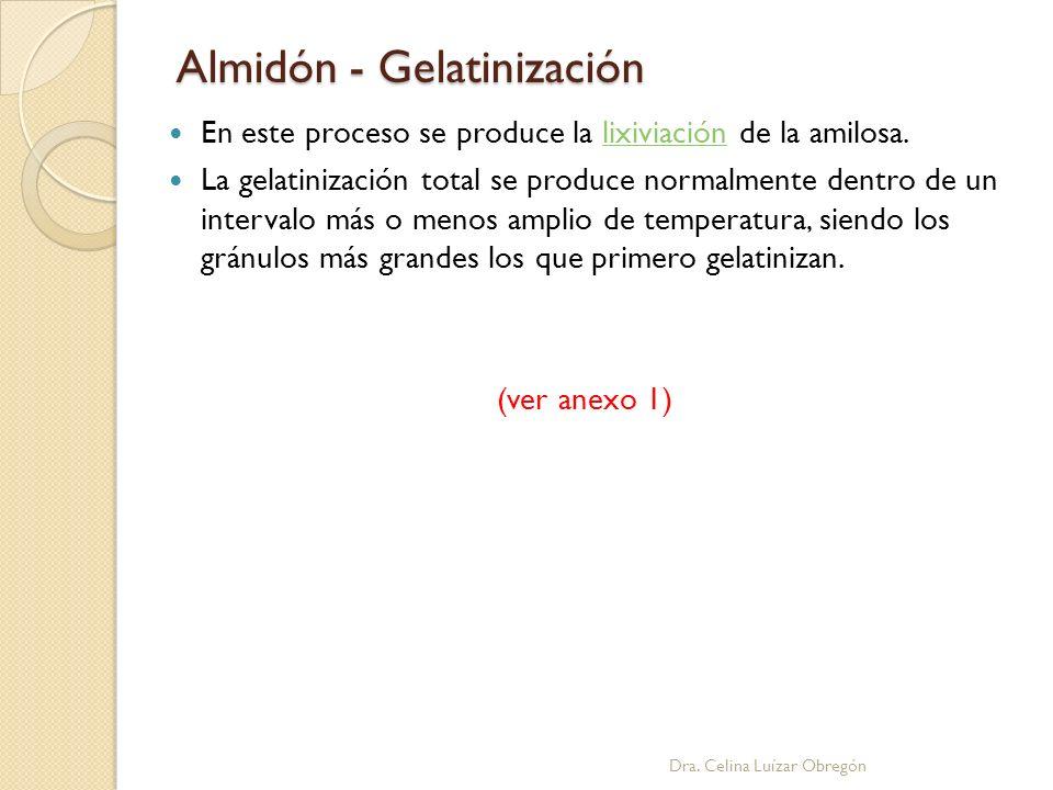 Almidón - Gelatinización Dra. Celina Luízar Obregón En este proceso se produce la lixiviación de la amilosa.lixiviación La gelatinización total se pro