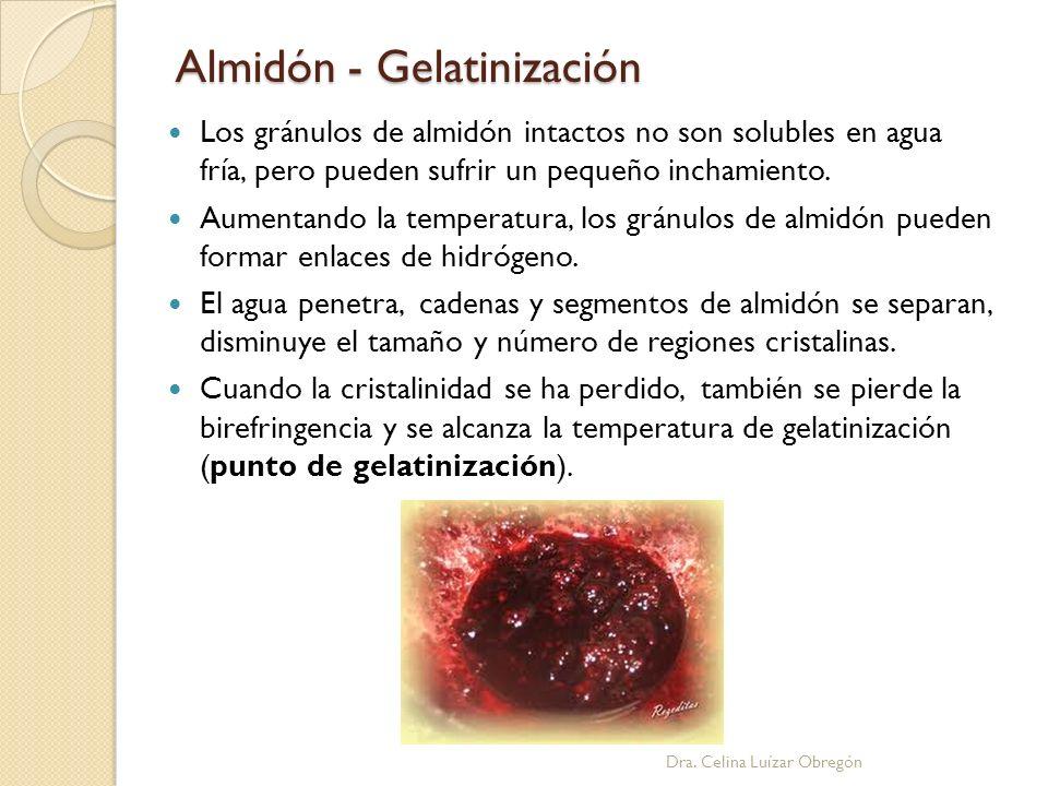Almidón - Gelatinización Dra. Celina Luízar Obregón Los gránulos de almidón intactos no son solubles en agua fría, pero pueden sufrir un pequeño incha