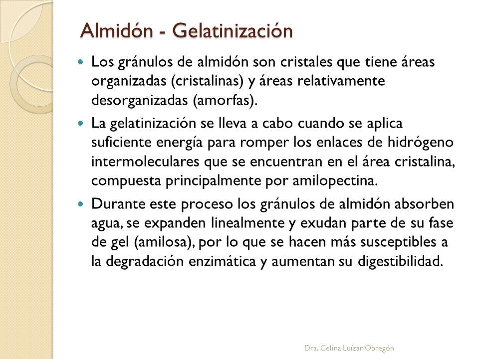 Almidón - Gelatinización Dra. Celina Luízar Obregón Los gránulos de almidón son cristales que tiene áreas organizadas (cristalinas) y áreas relativame
