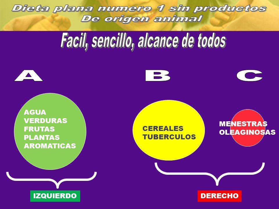 AGUA VERDURAS FRUTAS PLANTAS AROMATICAS CEREALES TUBERCULOS MENESTRAS OLEAGINOSAS IZQUIERDODERECHO