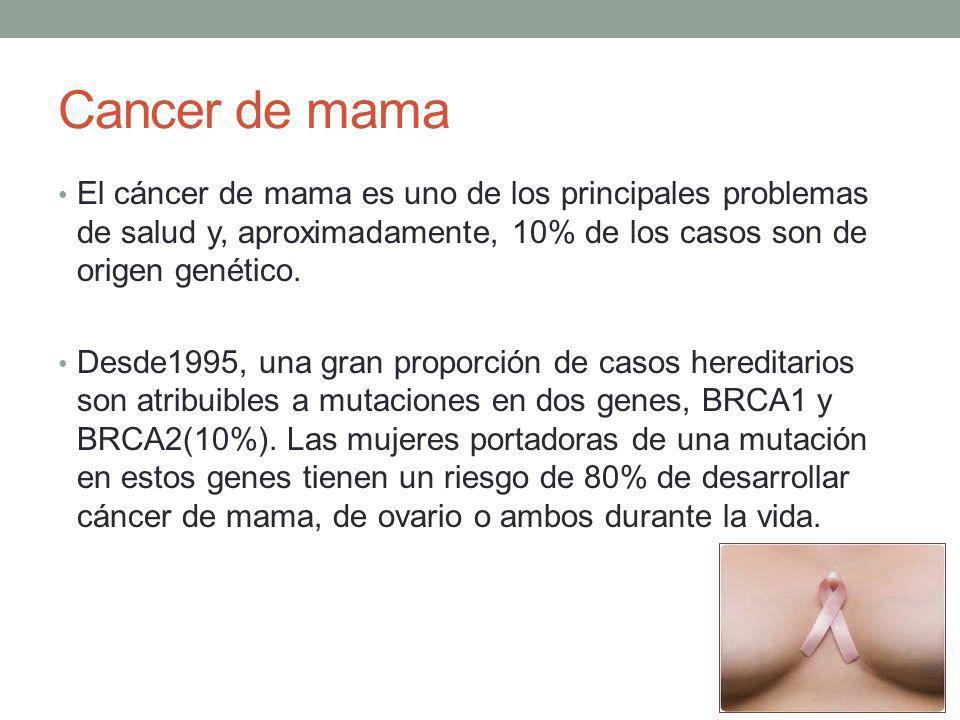 Cancer de mama El cáncer de mama es uno de los principales problemas de salud y, aproximadamente, 10% de los casos son de origen genético. Desde1995,