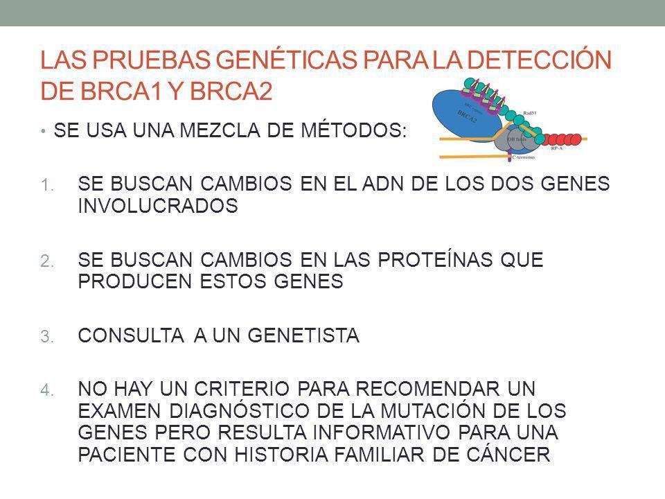 LAS PRUEBAS GENÉTICAS PARA LA DETECCIÓN DE BRCA1 Y BRCA2 SE USA UNA MEZCLA DE MÉTODOS: 1. SE BUSCAN CAMBIOS EN EL ADN DE LOS DOS GENES INVOLUCRADOS 2.