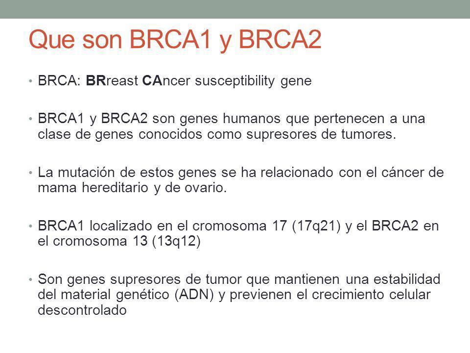 Que son BRCA1 y BRCA2 BRCA: BRreast CAncer susceptibility gene BRCA1 y BRCA2 son genes humanos que pertenecen a una clase de genes conocidos como supr