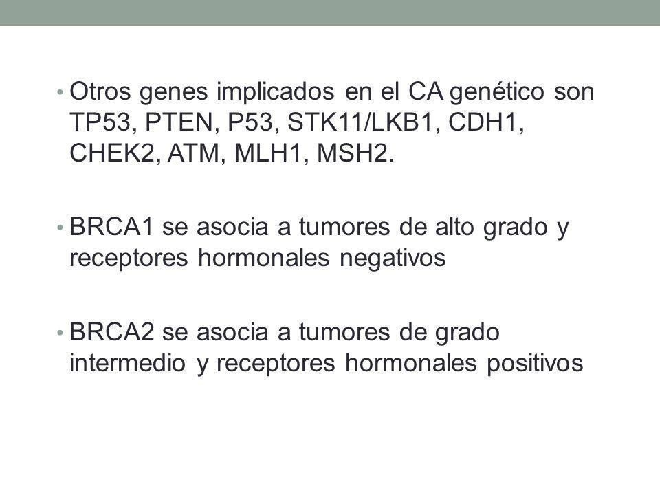 Otros genes implicados en el CA genético son TP53, PTEN, P53, STK11/LKB1, CDH1, CHEK2, ATM, MLH1, MSH2. BRCA1 se asocia a tumores de alto grado y rece