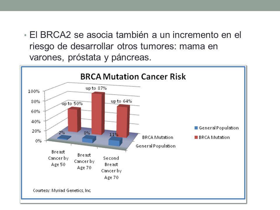 Determinación de riesgo Para las mujeres que no son de ascendencia judía asquenazí: Dos familiares de primer grado (madre, hija o hermana) con diagnóstico de cáncer de mama, uno de los cuales fue diagnosticado a los 50 años o menos.