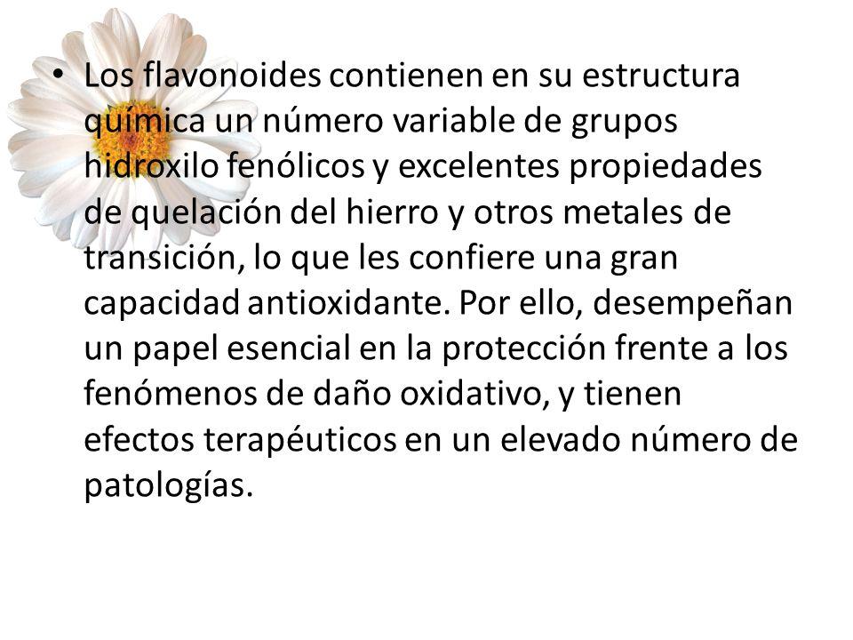 Los flavonoides contienen en su estructura química un número variable de grupos hidroxilo fenólicos y excelentes propiedades de quelación del hierro y