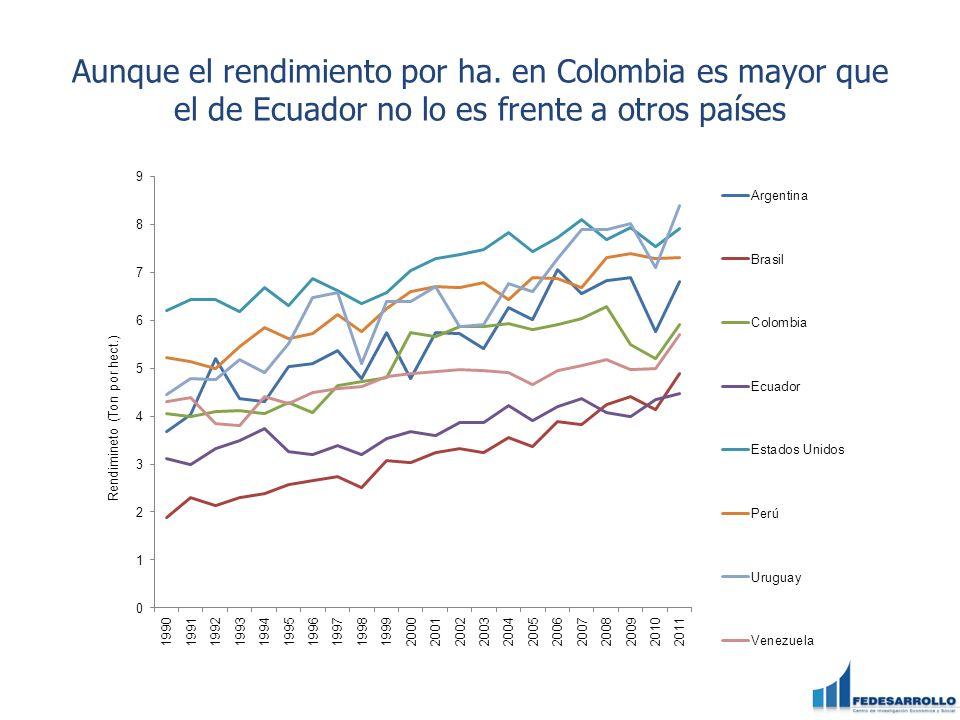 Aunque el rendimiento por ha. en Colombia es mayor que el de Ecuador no lo es frente a otros países