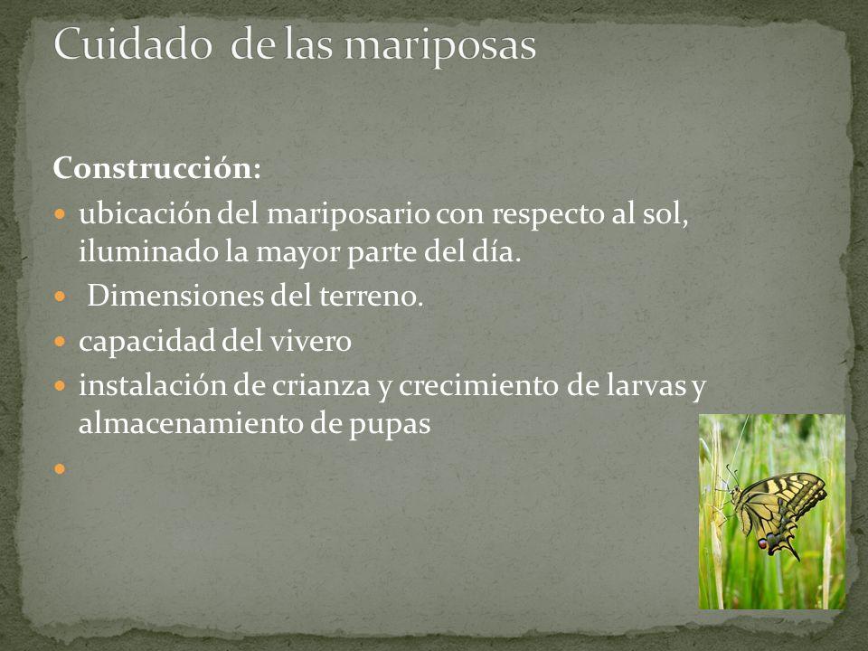 Ambiente Una de las condiciones es la humedad ambiental.