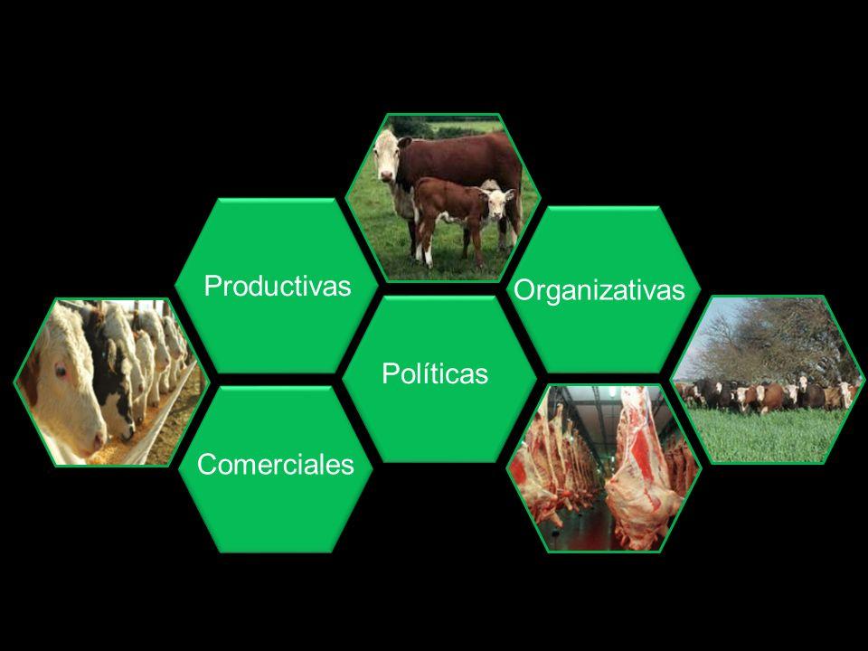 Productivas Comerciales Políticas Organizativas