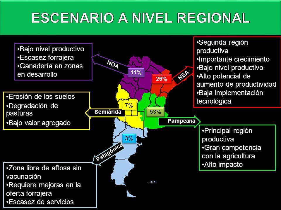 Principal región productivaPrincipal región productiva Gran competencia con la agriculturaGran competencia con la agricultura Alto impactoAlto impacto