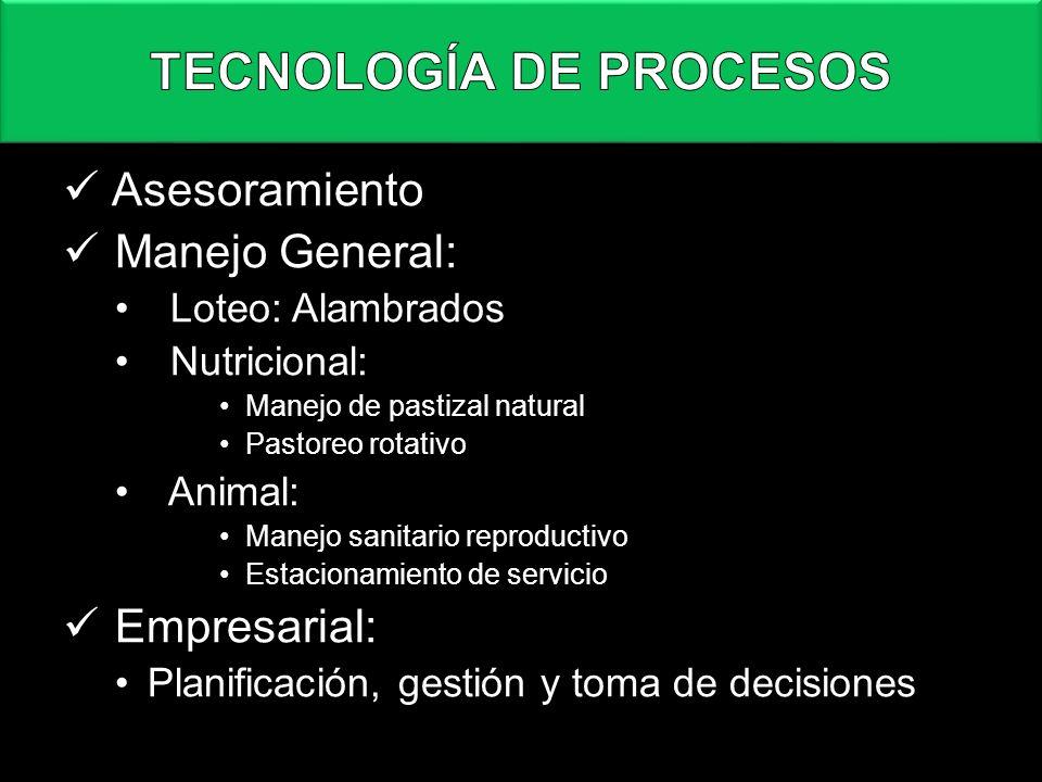 Asesoramiento Manejo General: Loteo: Alambrados Nutricional: Manejo de pastizal natural Pastoreo rotativo Animal: Manejo sanitario reproductivo Estaci