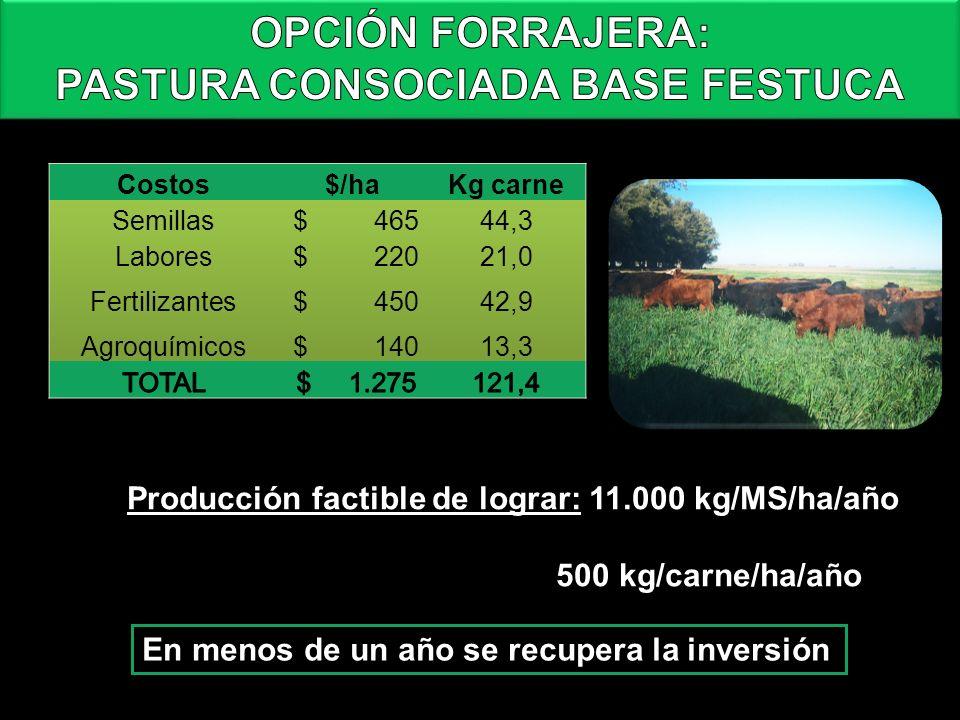 En menos de un año se recupera la inversión Producción factible de lograr: 11.000 kg/MS/ha/año 500 kg/carne/ha/año