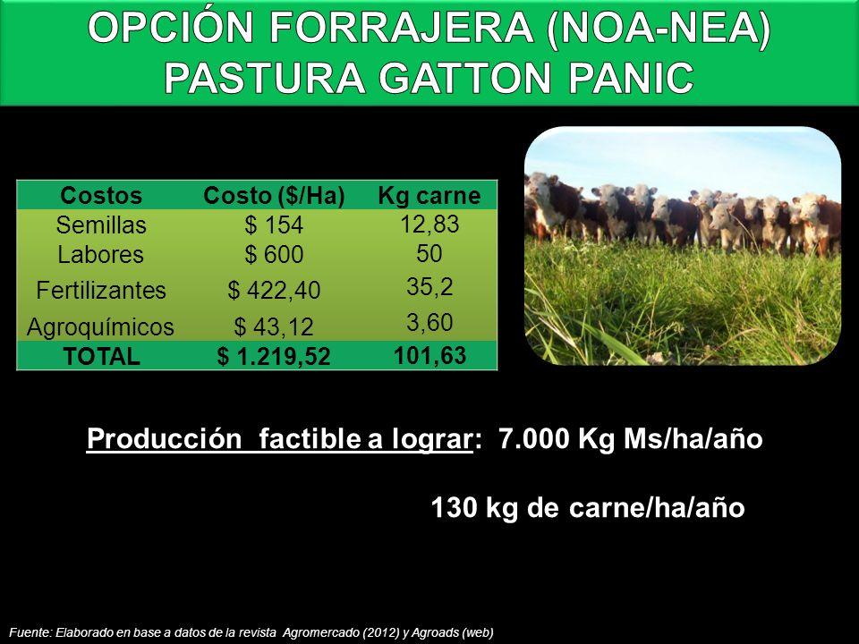 Fuente: Elaborado en base a datos de la revista Agromercado (2012) y Agroads (web) Producción factible a lograr: 7.000 Kg Ms/ha/año 130 kg de carne/ha